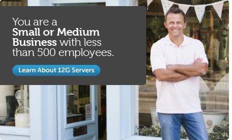You are a Small or Medium Business with less than 500 employees